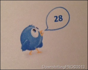 ProfessionalOrganaizersBlogCarnival_JanetBarclay_DownshiftingPRO_5